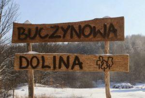 buczynowadolina_logo
